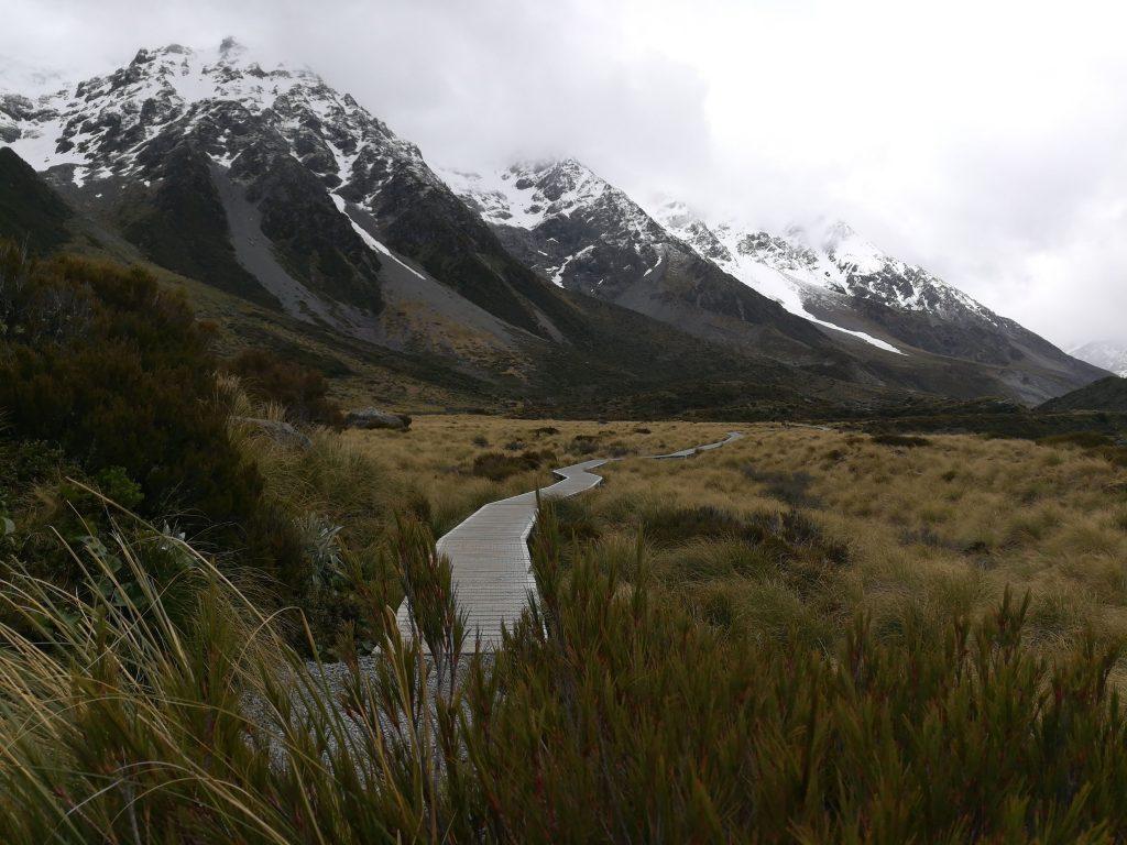Neuseeland - 25 Tage am anderen Ende der Welt