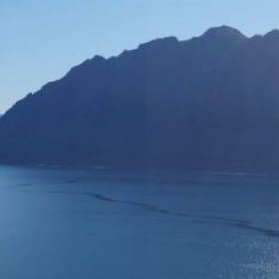Tag 9 – die Fahrt zum Franz Josef und Fox Glacier