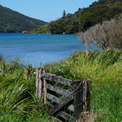 Tag 15 – Queen Charlotte Track