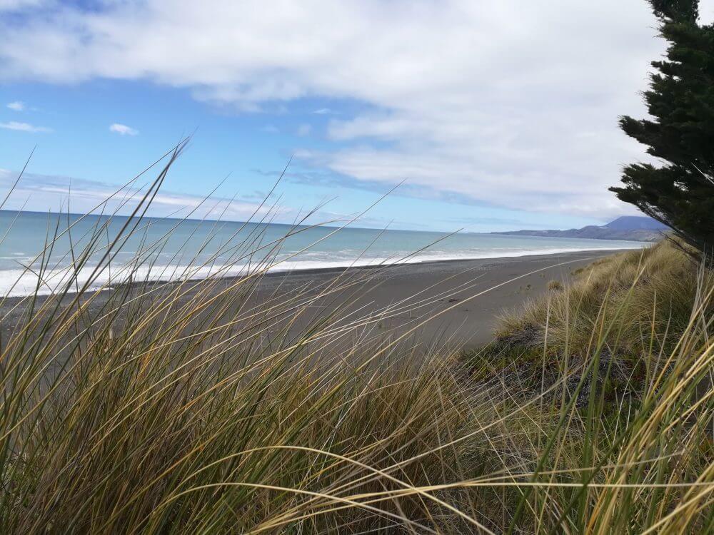Tag 13 – Kaikoura in Neuseeland