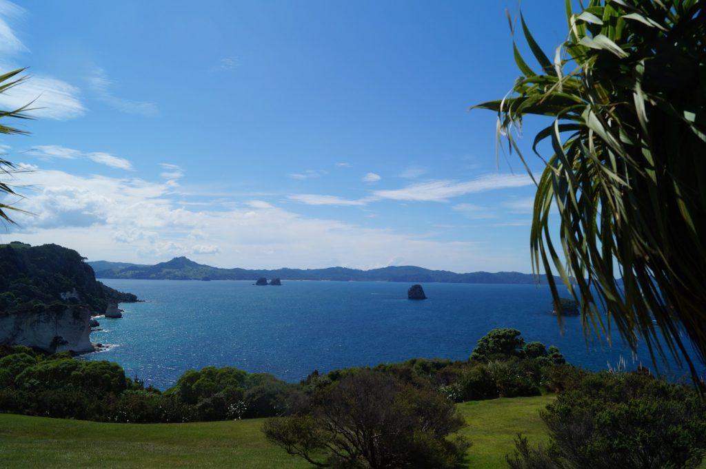 Ausblick vom Weg zu Cathdral Cove