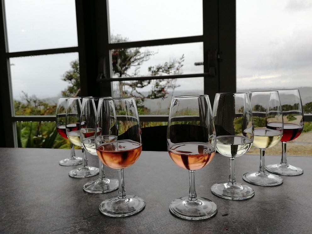Weinprobe auf Waiheke Island auf der Nordinsel von Neuseeland
