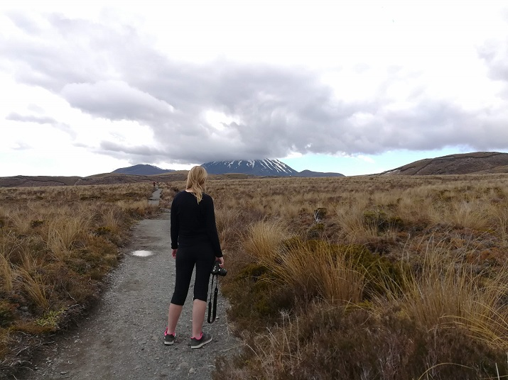 Blick auf den Tongariro auf der Nordinsel von Neuseeland