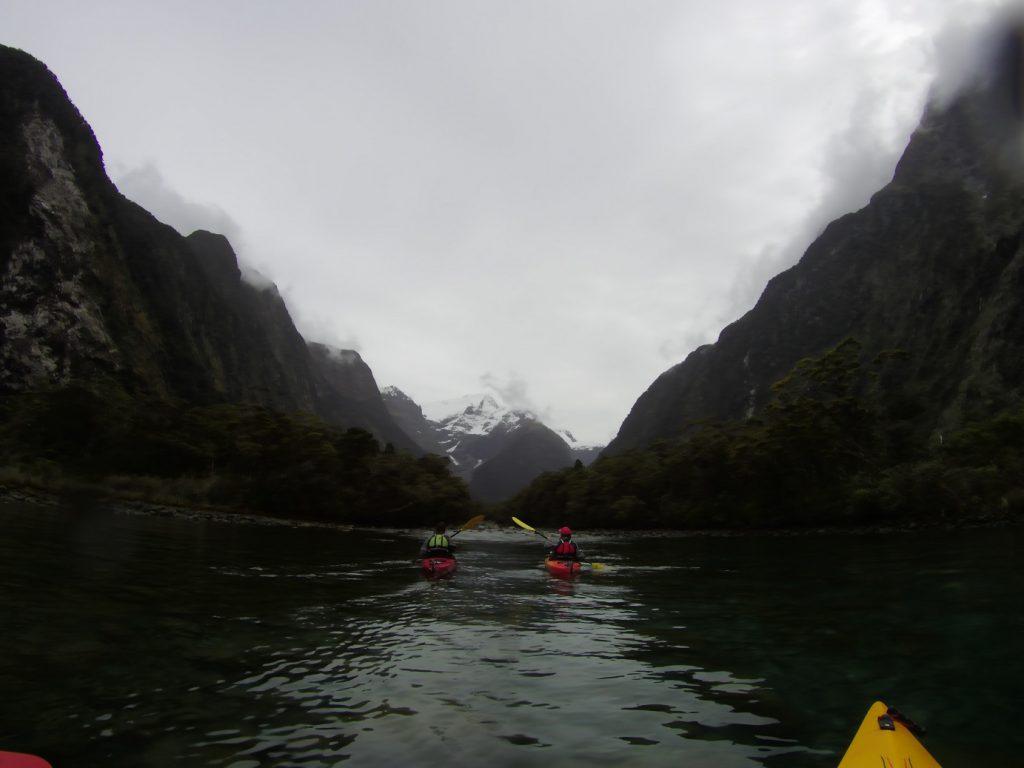 Mit dem Kayak unterwegs im Milford Sound