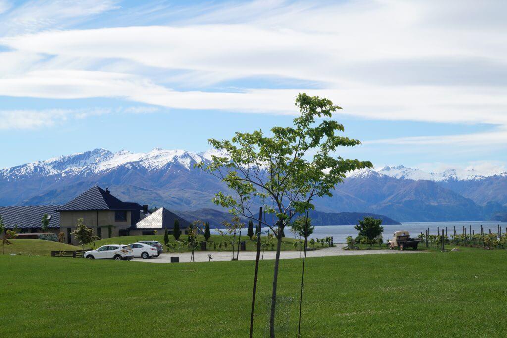 Rippon Vineyard am Lake Wanaka