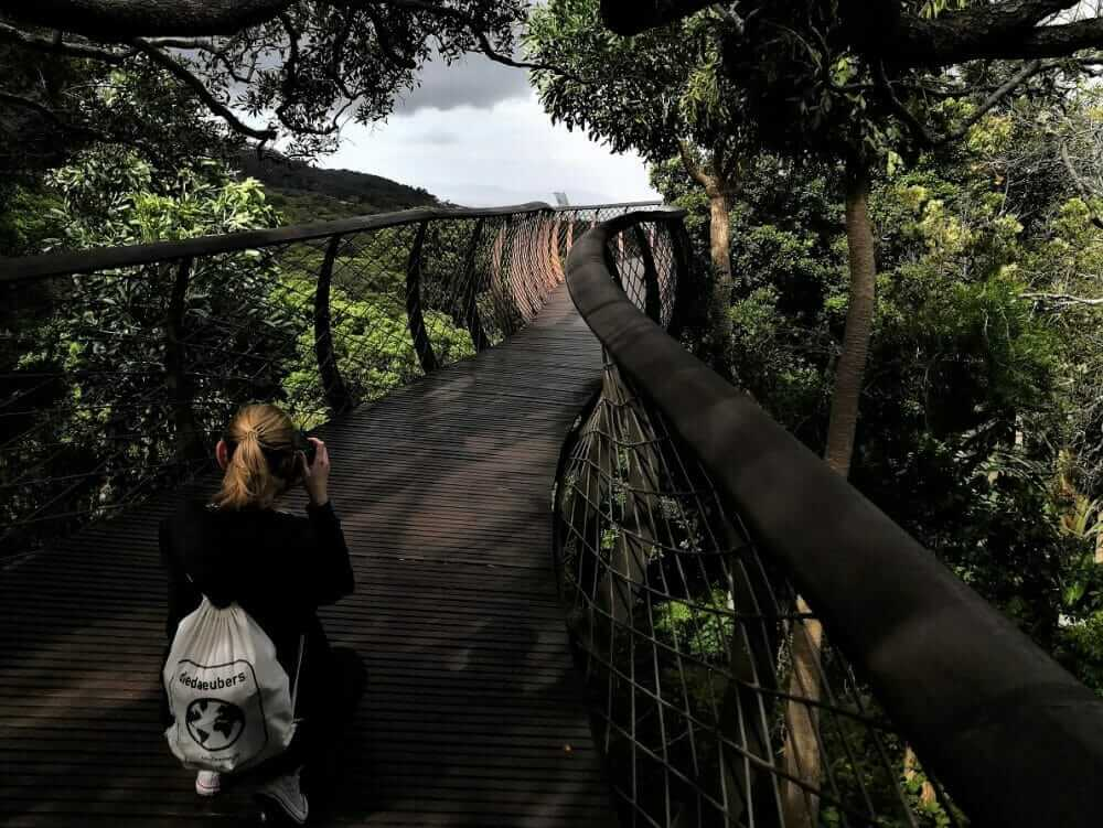 Tag 4 – in Kapstadt: Lion's Head, Kirstenbosch & Bo-Kaap