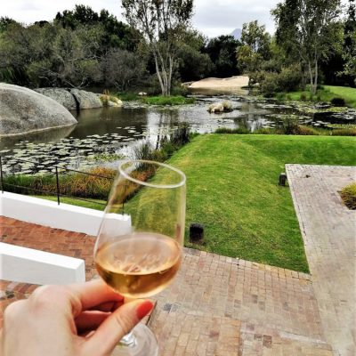 Tag 5 – Unser Ausflug in die Wine Lands