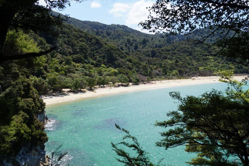Eine Bucht im Abel Tasman